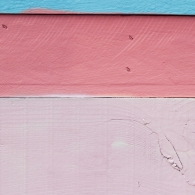 color-hunting-series-A021