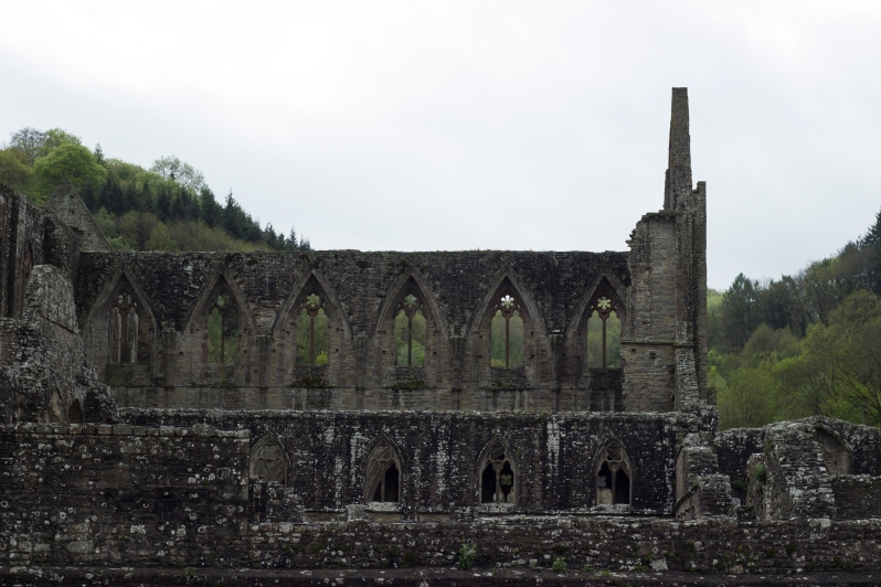 tintern-abbey-profile